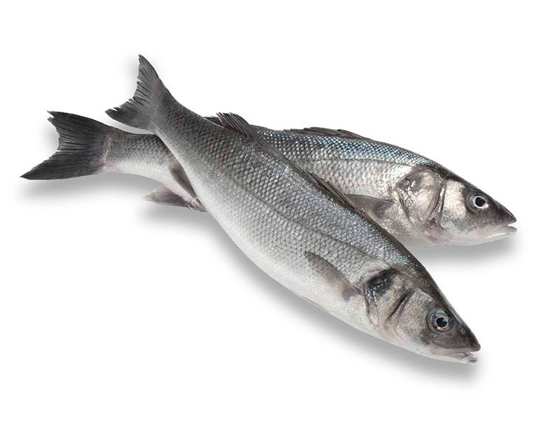 Ristorante Marcello Torino - materie prime - pesce